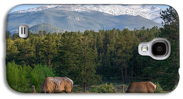 Grazing Elk With Longs Peak Galaxy S4 Case by Aaron Spong
