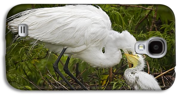Great Egret And Chick Galaxy S4 Case by Susan Candelario