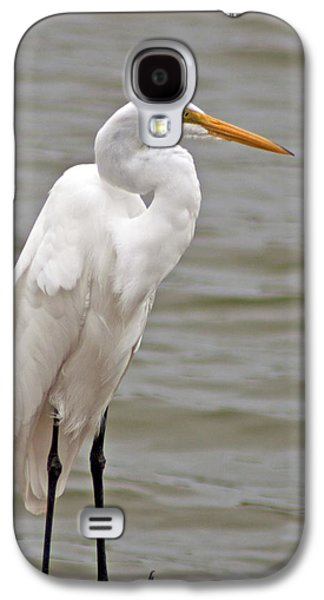 Galaxy S4 Case featuring the photograph Great Egret by Bill Barber