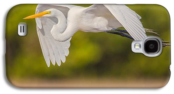 Great Egret Folded Wings Galaxy S4 Case