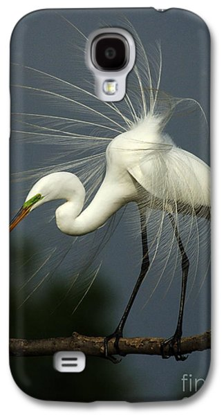 Majestic Great White Egret High Island Texas Galaxy S4 Case by Bob Christopher