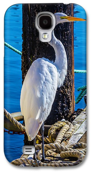 Great White Heron Galaxy S4 Case by Garry Gay