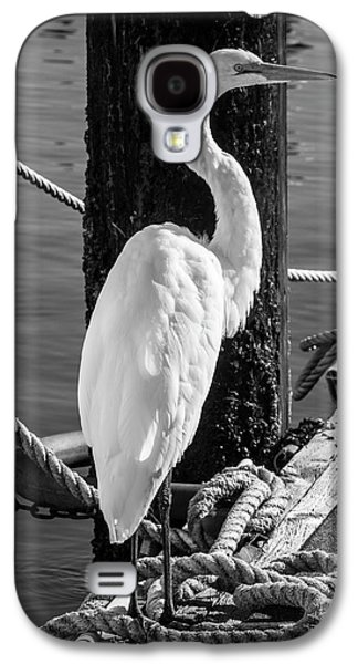 Great White Heron In Black And White Galaxy S4 Case by Garry Gay
