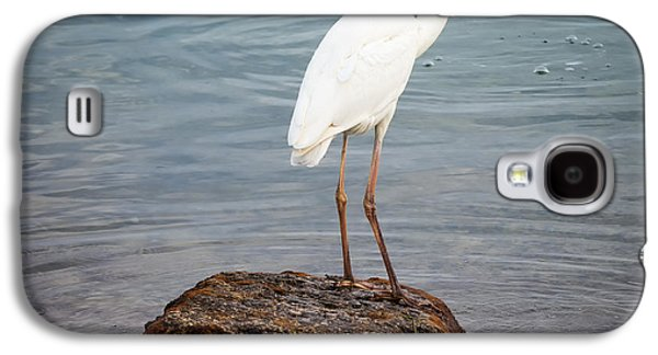 Great White Heron With Fish Galaxy S4 Case by Elena Elisseeva
