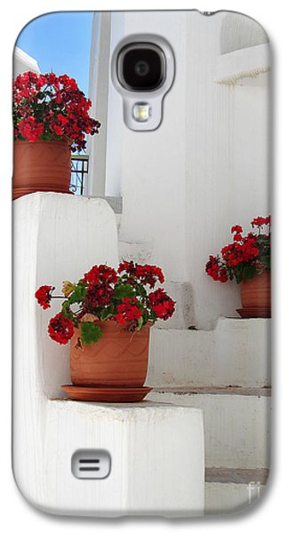 Greek Steps  Galaxy S4 Case by Jane Rix