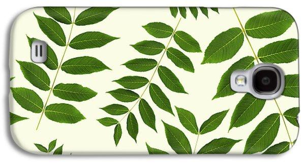 Botanical Pattern Galaxy S4 Case by Christina Rollo