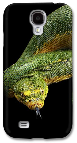 Green Tree Python. Morelia Viridis. Isolated Black Background Galaxy S4 Case by Sergey Taran