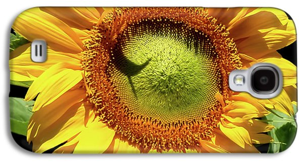 Greenburst Sunflower Galaxy S4 Case