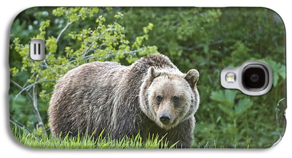 Galaxy S4 Case featuring the photograph Grizzly Bear by Gary Lengyel