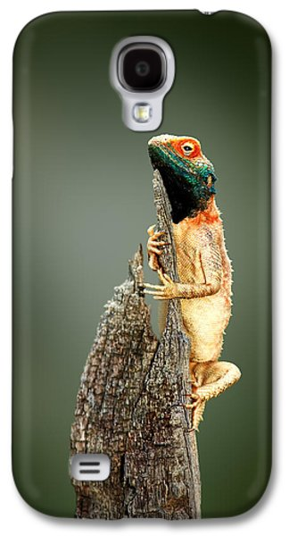 Ground Agama Sunbathing Galaxy S4 Case by Johan Swanepoel