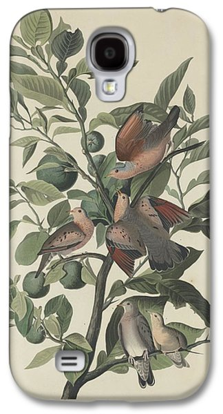 Ground Dove Galaxy S4 Case by Rob Dreyer