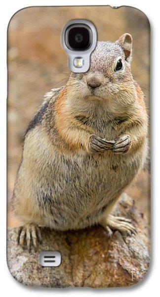 Grumpy Squirrel Galaxy S4 Case