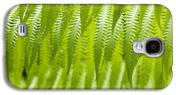 Hapu'u Fern Detail Galaxy S4 Case