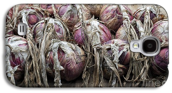 Harvested Onions Red Winter Galaxy S4 Case by Tim Gainey