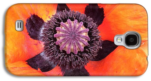 Galaxy S4 Case - Heart Of A Poppy by Orphelia Aristal
