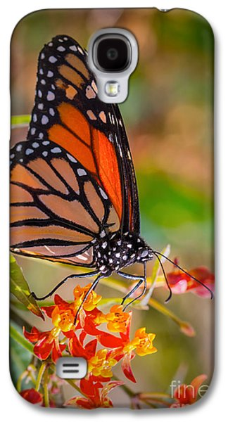 Hello Butterfly Galaxy S4 Case