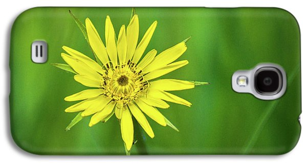 Galaxy S4 Case featuring the photograph Hello Wild Yellow by Bill Pevlor