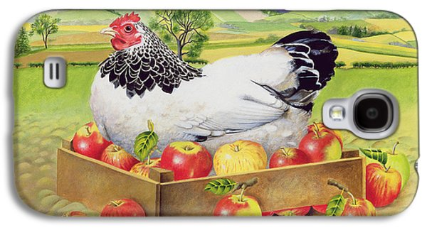 Hen In A Box Of Apples Galaxy S4 Case