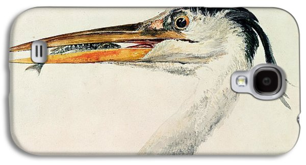 Heron With A Fish Galaxy S4 Case