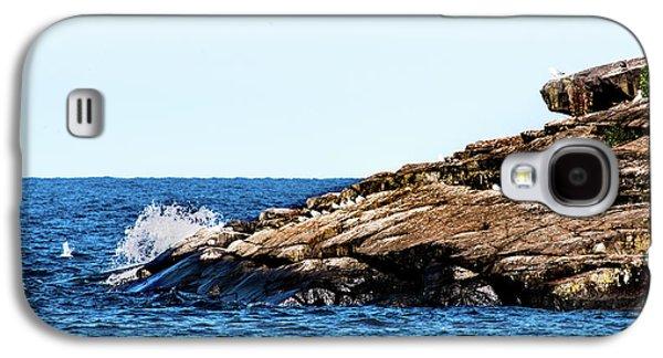 Herring Gull Picnic Galaxy S4 Case