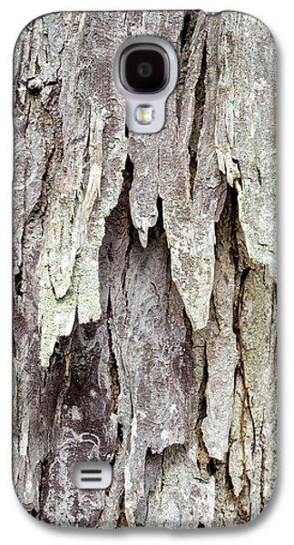 Hickory Tree Bark Abstract Galaxy S4 Case by Christina Rollo