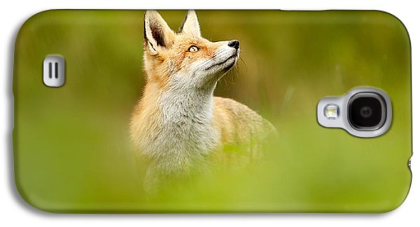 High Hopes - Red Fox Looking Up Galaxy S4 Case by Roeselien Raimond