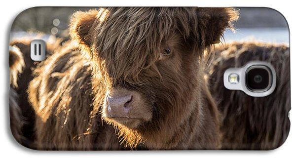 Highland Baby Coo Galaxy S4 Case