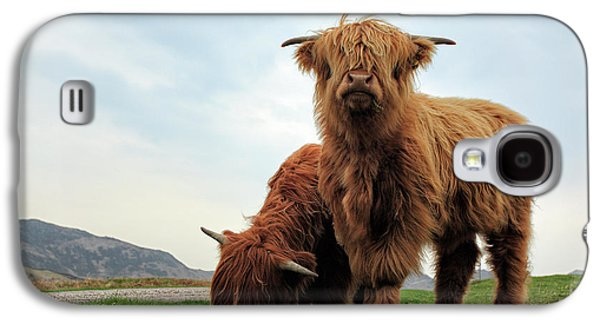 Bull Galaxy S4 Case - Highland Cow Calves by Grant Glendinning
