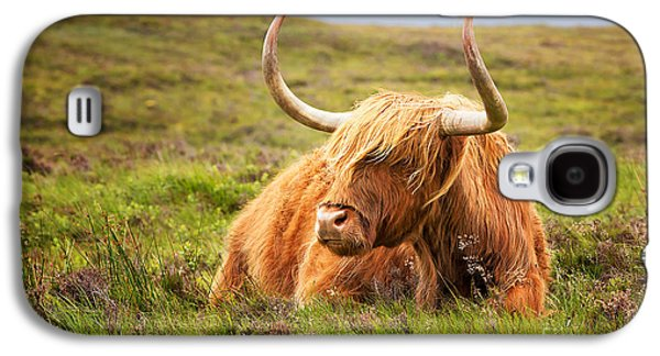 Highland Cow Galaxy S4 Case by Jane Rix