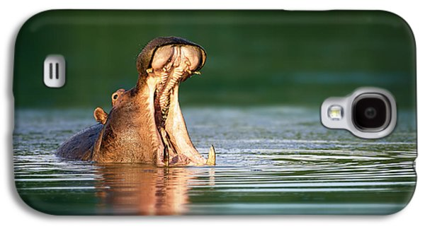 Hippopotamus Galaxy S4 Case by Johan Swanepoel