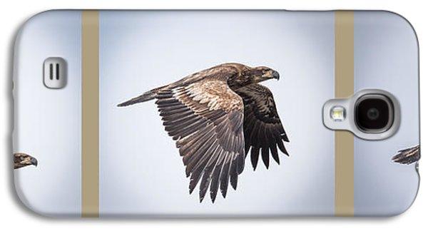 Horizontal Eagle Triptych Galaxy S4 Case by Paul Freidlund