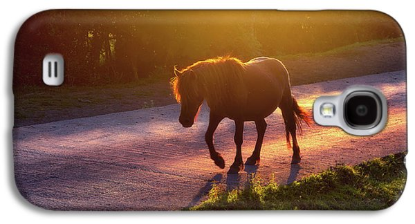 Horse Crossing The Road At Sunset Galaxy S4 Case by Mikel Martinez de Osaba