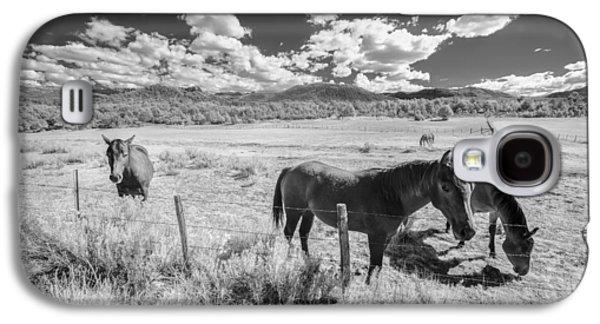 Horses Of San Juan Galaxy S4 Case
