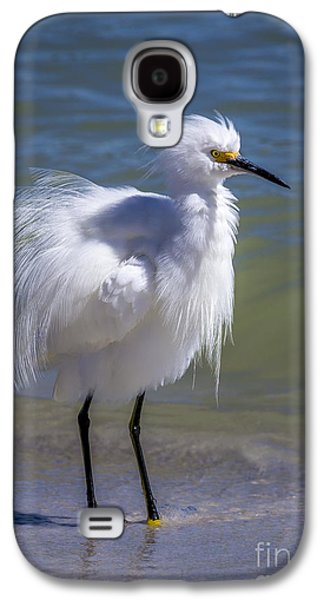 Egret Galaxy S4 Case - How Do I Look by Marvin Spates