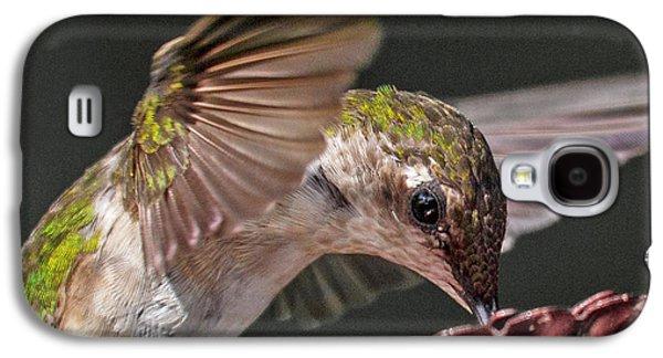 Hummingbird Graceful Little Lady Galaxy S4 Case
