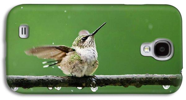 Hummingbird In The Rain Galaxy S4 Case