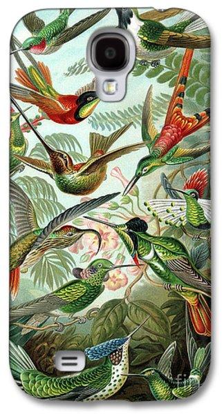 Hummingbirds Galaxy S4 Case