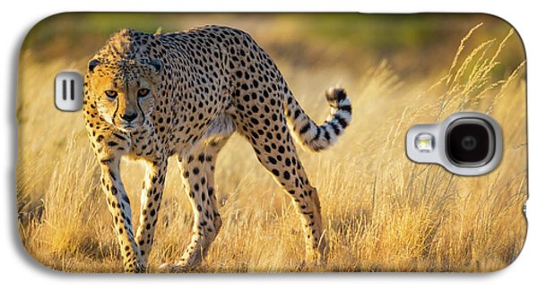 Hunting Cheetah Galaxy S4 Case by Inge Johnsson