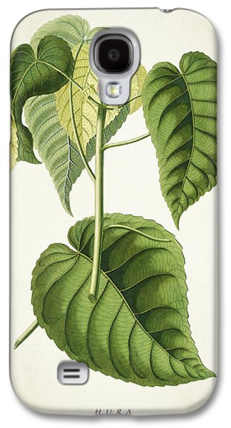 Hura Botanical Print Galaxy S4 Case