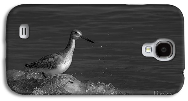 Sandpiper Galaxy S4 Case - I Can Make It - Bw by Marvin Spates