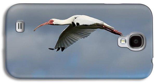 Ibis In Flight Galaxy S4 Case by Carol Groenen