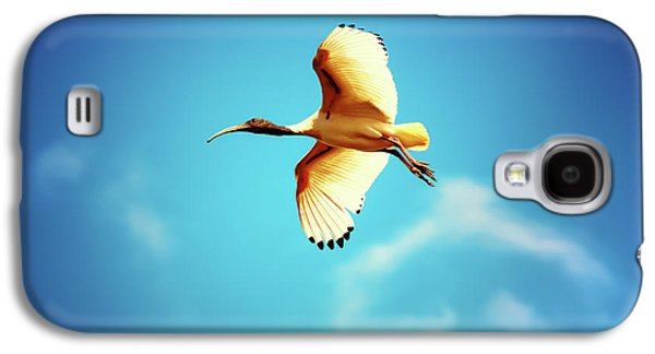 Ibis Of Light Galaxy S4 Case