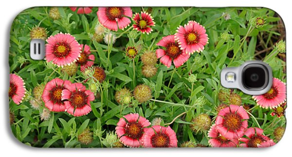Indian Blanket Flowers Galaxy S4 Case