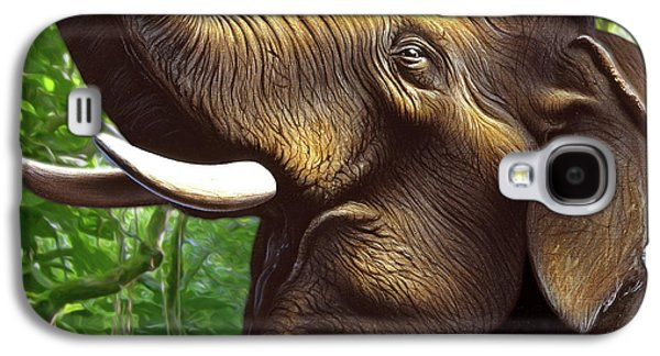 Indian Elephant 1 Galaxy S4 Case by Jerry LoFaro