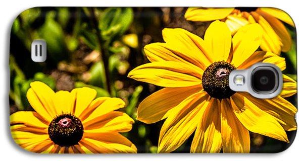 Indian Summer Gloriosa Daisy Galaxy S4 Case