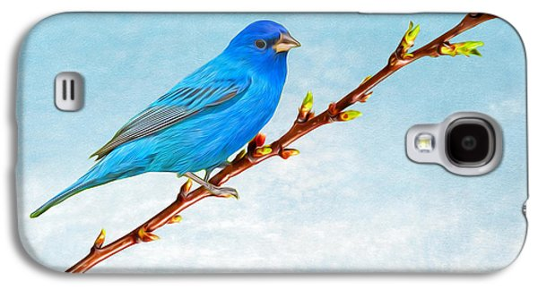 Bunting Galaxy S4 Case - Indigo Bunting by Laura D Young