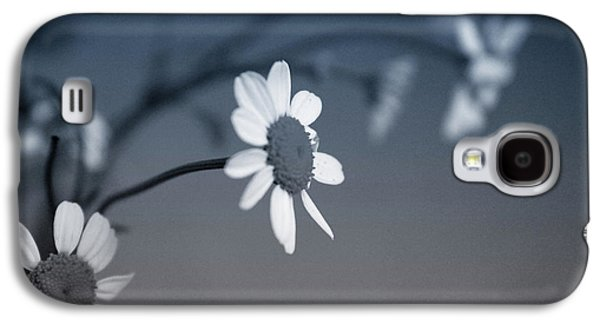 Daisy Galaxy S4 Case - Indigo Daisies 1- Art By Linda Woods by Linda Woods