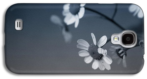 Daisy Galaxy S4 Case - Indigo Daisies 2- Art By Linda Woods by Linda Woods