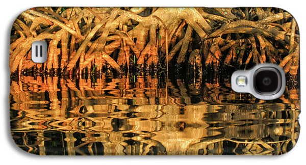 Intertwined Galaxy S4 Case