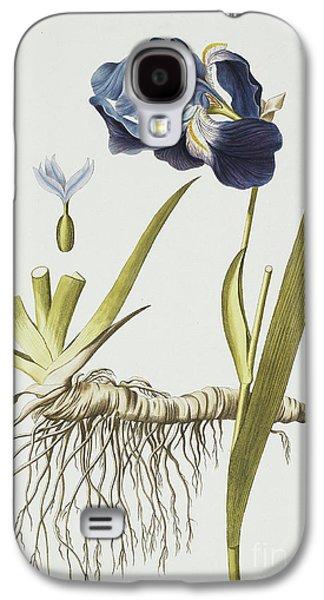 Iris Germanica Galaxy S4 Case